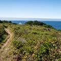 The trails leading around Port Orford Heads.- Port Orford Heads State Park