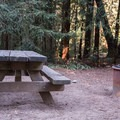 Sites include a picnic table and a firepit.- Mount Madonna Valley View Campground #1