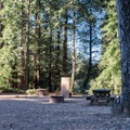 Spacious and open campsites.- Mount Madonna Valley View Campground #1