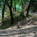 A switchback along the lower portion of the Wildcat Loop Trail.- Rogue Valley + Wildcat Loop
