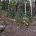 The trail to Strawberry Lake.- Little Strawberry Lake via Strawberry Lake + Strawberry Falls