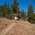The vegetation thins as you continue toward Strawberry Mountain's summit.- Strawberry Mountain via Strawberry Lake