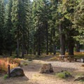 Typical campsite.- Strawberry Campground