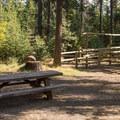 Typical campsite.- Slide Creek Horse Camp
