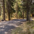 Typical campsite.- Dixie Campground