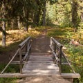 A bridge crosses a creek and leads to the day use area.- Dixie Campground