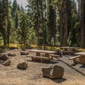 The large day use area in the campground.- Dixie Campground