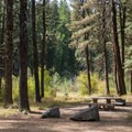 Campsites are well spaced.- Middle Fork Campground