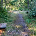 Picnic clearing.- Paradise Valley Conservation Area