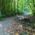 Shared trail.- Paradise Valley Conservation Area