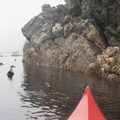 A kayaker paddles through the fog along the southern end of Lopez Island.- Anacortes to Friday Harbor Sea Kayaking