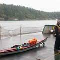 Kayaks are allowed on the ferry from Friday Harbor to Anacortes.- Anacortes to Friday Harbor Sea Kayaking