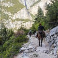 Some prefer hitching a ride up to the valley rim (guided horse tours available).- Four Mile Trail to Glacier Point