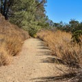 The Serpentine Trail, Anderson Lake County Park.- Serpentine Trail