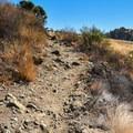 Near the top.- Serpentine Trail