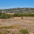Landscape view from Rancho Laguna Seca Trail.- Lakeview + Grey Pines Loop, Rosendin Park