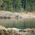 People walk the trails on Jones Island.- Jones Island Sea Kayaking
