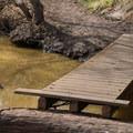 A bridge over Moore Creek.- Monarch Trail Hike