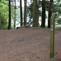 Moran State Park camp site.- Orcas Island: Moran State Park Campgrounds