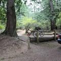 Moran State Park.- Orcas Island: Moran State Park Campgrounds