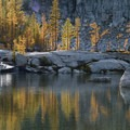 Western larch (Larix occidentalis) at Lake Viviane in the Enchantments.- Enchantment Lakes Hike via Snow Lakes