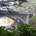 View of the bridge and beach from the dense costal forest. - Neptune State Scenic Viewpoint