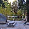 Day use area.- Whitney Portal Recreation Area
