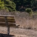Park benches set around the slough.- Long Valley + Five Fingers Loop