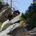 Granite boulders along the Castle Rock Loop.- Castle Rock Loop