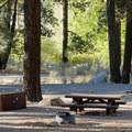 Sites in the middle of the campground.- Crystal Springs Campground