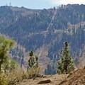 Alpine Meadows view.- Five Lakes Trail