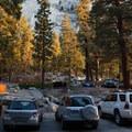 Overflow parking.- Whitney Ravine Walk-in Campground