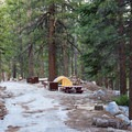Typical site at Whitney Ravine Walk-in Campground.- Whitney Ravine Walk-in Campground