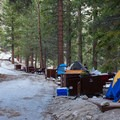 Typical sites at Whitney Ravine Walk-in Campground.- Whitney Ravine Walk-in Campground