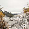 Western larch (Larix occidentalis) in the Enchantment Lakes Basin.- Enchantment Lakes Hike via Colchuck Lake
