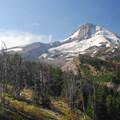Mount Hood from Cloud Cap Inn.- Mount Hood Wilderness