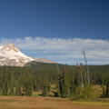 Elk Meadows view of Mount Hood.- Mount Hood Wilderness
