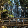 Ramona Falls.- Mount Hood Wilderness