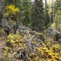 Colchuck Lake/Lake Stuart Trail.- Colchuck Lake Trail