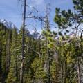 A glimpse of Mount Stuart (9,415') from the Colchuck Lake Trail.- Colchuck Lake Trail