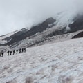 A group heads for Camp Muir with a glacier in the background.- Camp Muir Hike