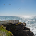 - Pigeon Point Lighthouse + Hostel