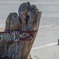 Greyhound Rock County Park.- Greyhound Rock County Park