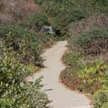 The path to the beach.- Greyhound Rock County Park