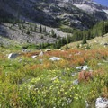 The upper Middle Fork is a beautiful U-shaped valley with several large, open meadows.- Middle Fork of the Boise River, Spangle Lake/Divide + Ingleborg Lake/Divide