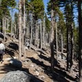 D.L. Bliss State Park.- Rubicon Trail