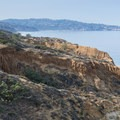 View of the cliffs from Razor Point Trail.- Torrey Pines State Natural Reserve