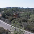 View of the lodge (visitor center) and Whitaker Garden from High Point.- Torrey Pines State Natural Reserve