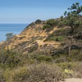 Guy Fleming Trail.- Torrey Pines State Natural Reserve