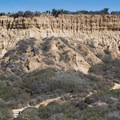 The cliffs.- Torrey Pines State Natural Reserve